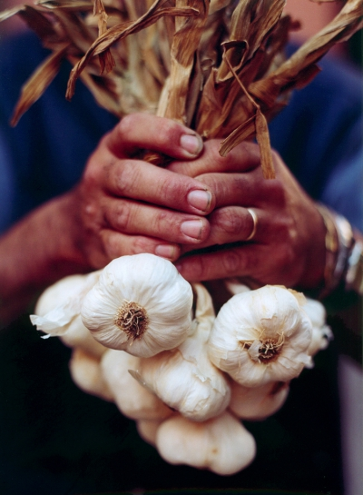 Image of the Month: Farmer's Hands