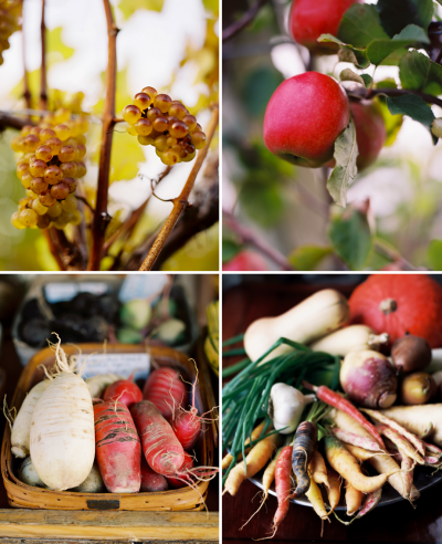 Image of the Month: Fall Harvest
