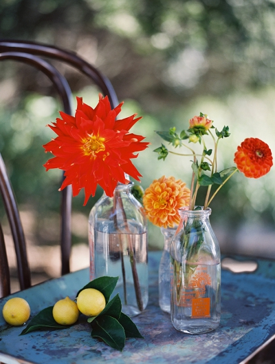 Farm to Table Shoot in Santa Barbara: Dahlia Farm