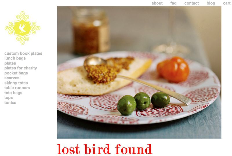 KWise_LostBirdFound-frontpage