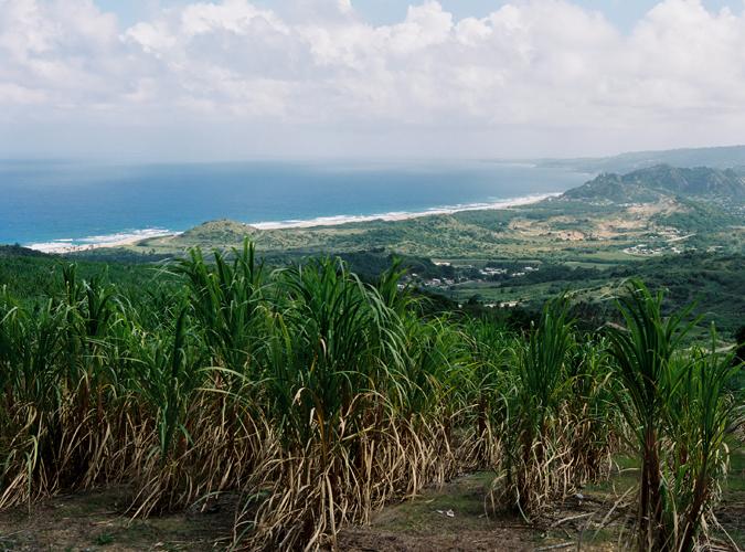 KarenWise_Barbados_10_01