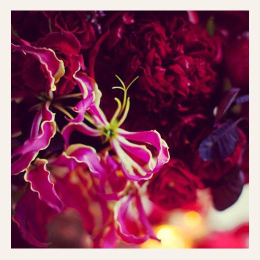 KarenWise_FleursNYCInstagram